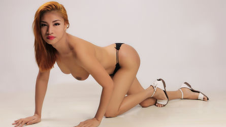 A1AsianChickx | MyTrannyCams