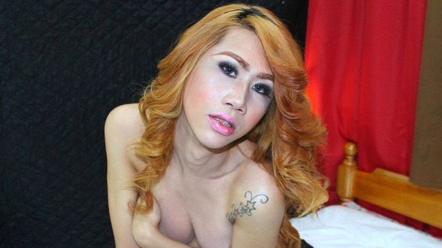 PassionDeAmor | MyTrannyCams