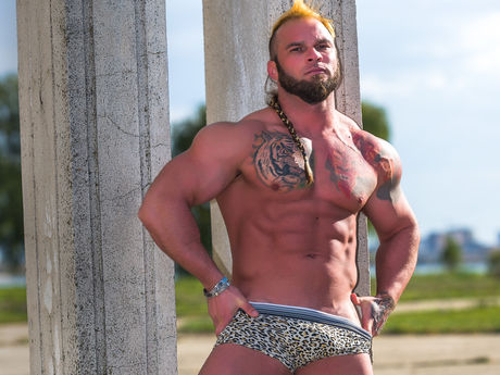 viking28 | Gaysexcams