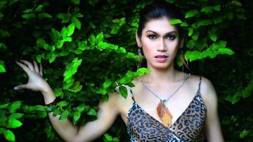 ExoticTiffanyXXX's hot webcam show – Transgender on Jasmin