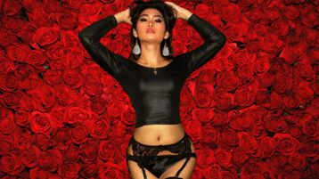 xxSEXROYALTYxx`s heta webcam show – Transgender på Jasmin