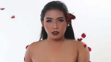 Show quente na webcam de HUGEdominantCOCK – Transgénero em Jasmin